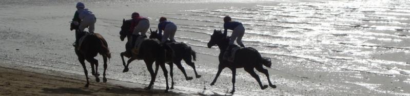 Runners and Riders - British Horse Racing