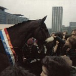 Red Rum, who won the Grand National 40 years ago. Here pictured at Castle Park, Bristol 1980.